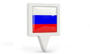 Как проверить готовность гражданства РФ