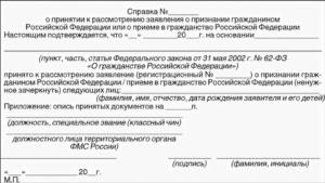 Документ, который выдается на период рассмотрения заявления о приеме в гражданство РФ